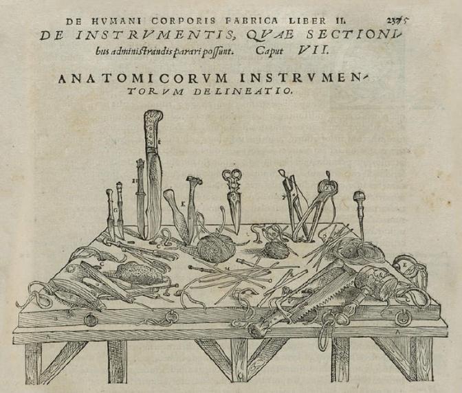 Mondino de' Liuzzi e la nascita dell'anatomia.
