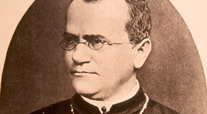 Il padre della genetica è il frate agostiniano Mendel.