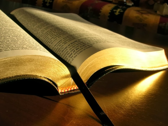 La vera storia di questo sinodo. Regista, esecutori, aiuti.