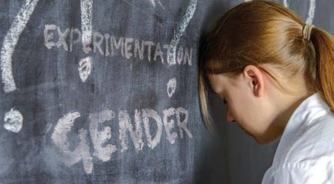 Gender nelle scuole: Adinolfi allerta contro i progetti Amnesty.